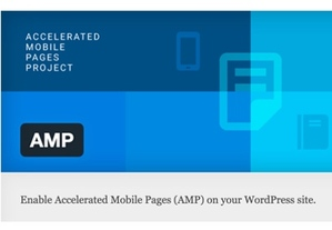 Installing AMP in WordPress