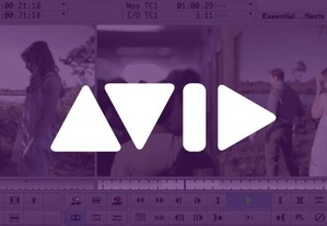 Set Up for Success: How to Organize Video With Bins in Avid Media Composer